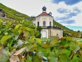 Schloss-Wackerbarth-Weingut-Bild-103
