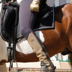 THE SADDLE AS AN ADAPTER