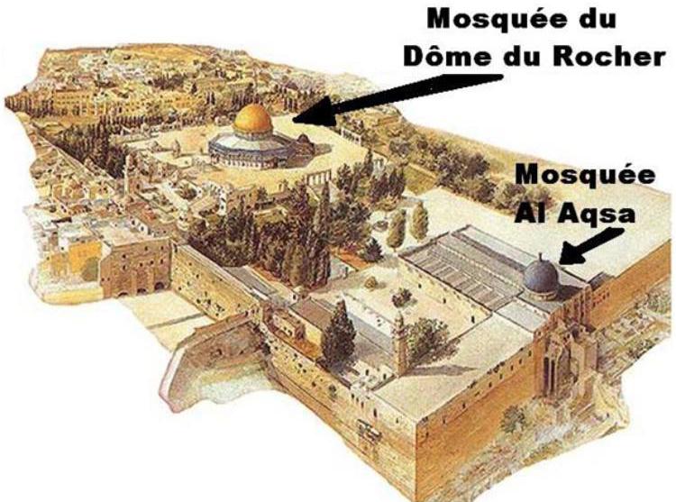 https://i1.wp.com/www.dreuz.info/wp-content/uploads/2017/07/Mosque%CC%81es.jpg