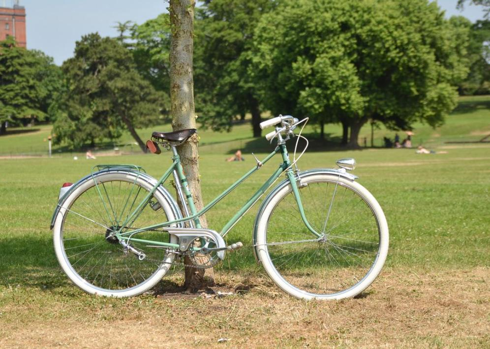 1950's Vintage Peugeot Bicycle Right Side against a tree