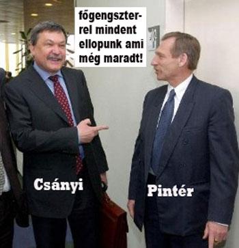 Pintér, Csányi Sándor, OTP