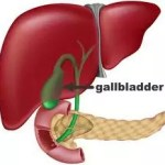 gallbladder health u0026 natural treatment for gallbladder problemsgallbladder health natural treatment u0026 prevention