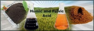 Humic and Fulvic Essential to Your Health