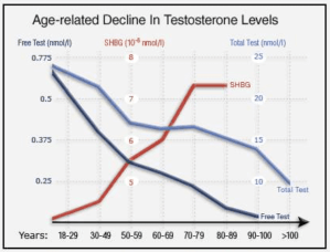 Estrogen Monitoring is Crucial in Testosterone Therapy