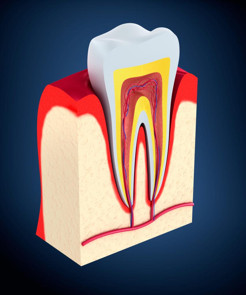 improve your gum health lititz pa