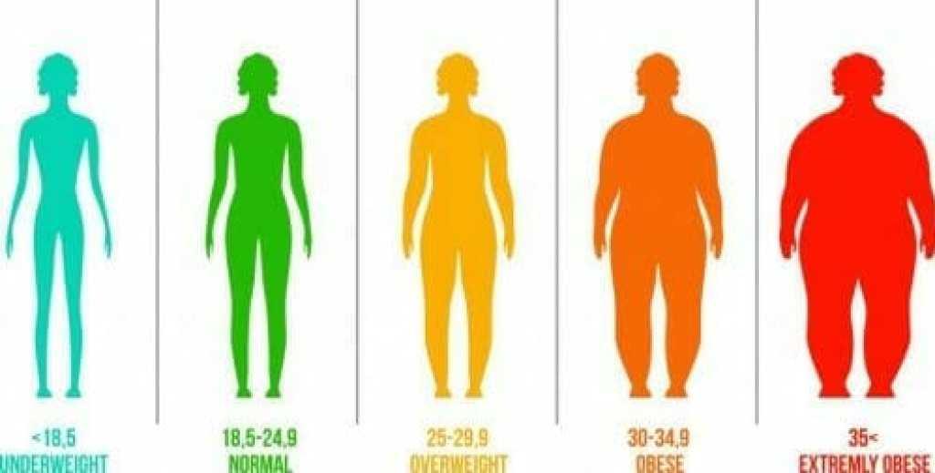 كيفية حساب مؤشر كتلة الجسمانظمه غذائيه للتخسيس السريع -