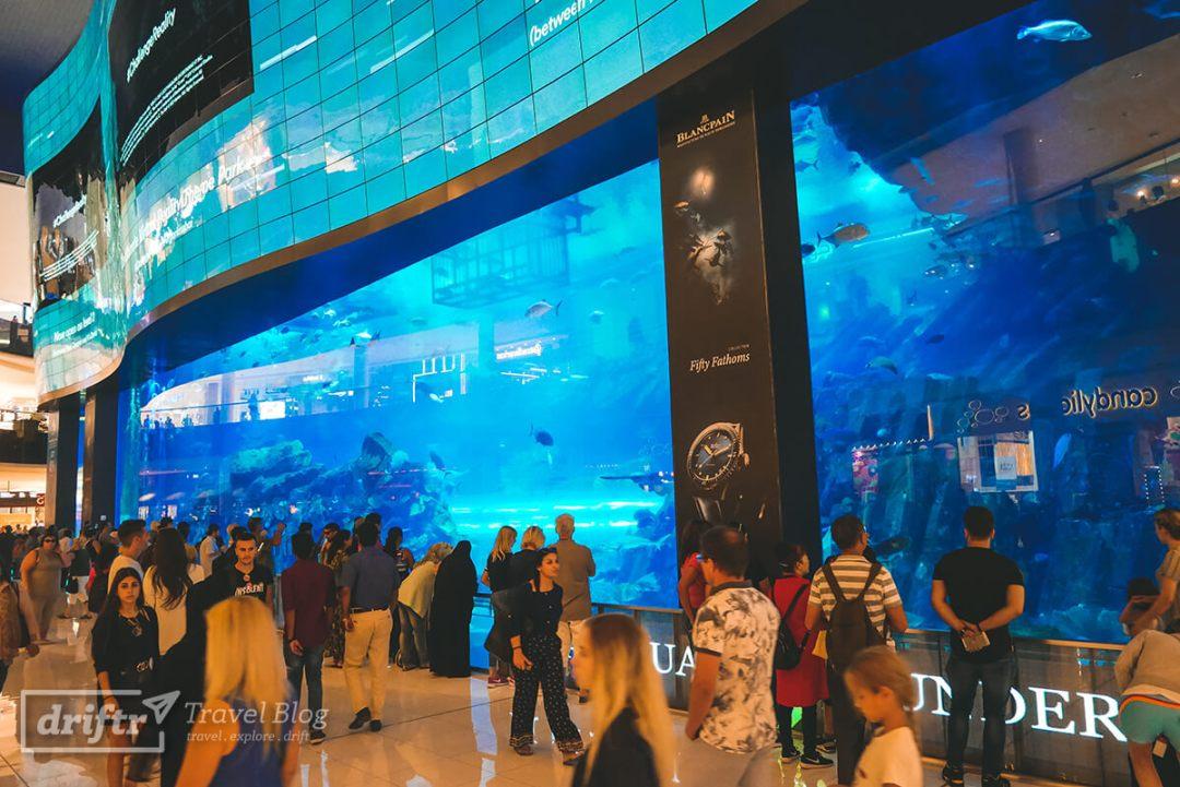 Dubai Aquarium in der Dubai Mall