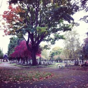 Lost in Teddington, Surrey, London