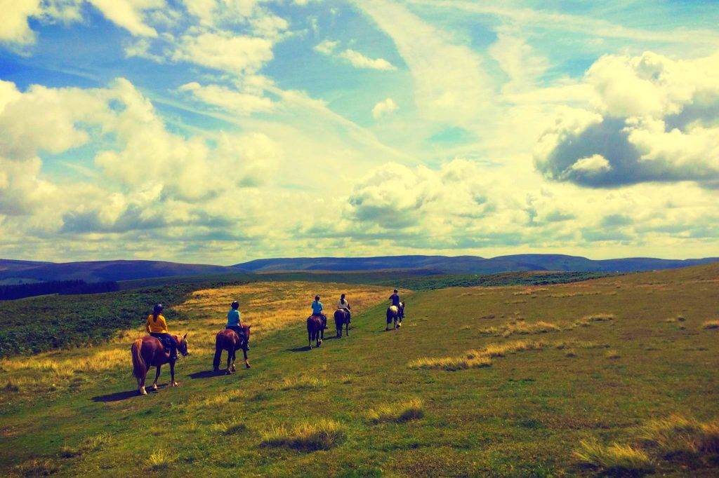 Horse Riding Holidays in Wales