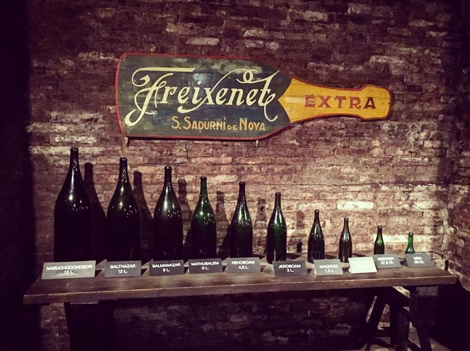Freixenet Cava Winery in Penedes outside of Barcelona