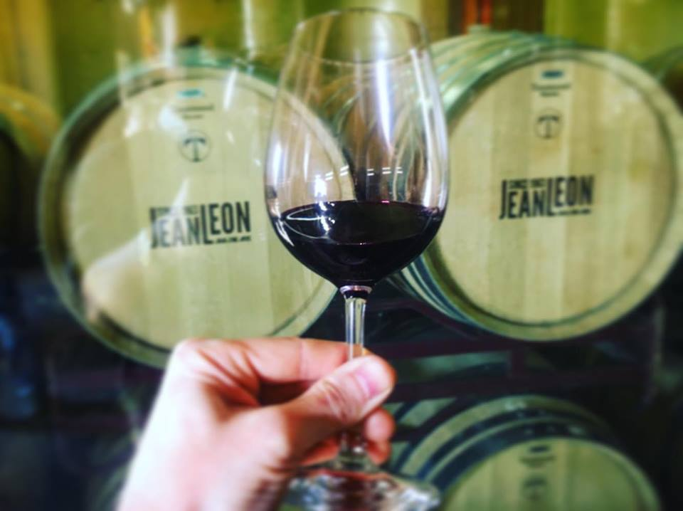 Jean Leon Winery Tour in Penedes, Barcelona