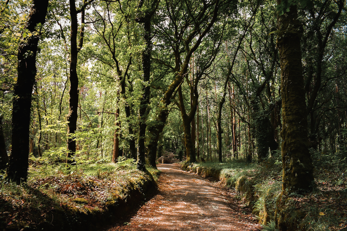 Things to Do in Galicia, Northern Spain - by Ben Holbrook