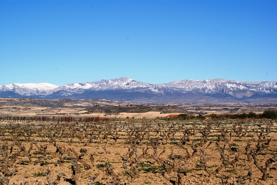 Logroño Wine Region Spain Road Trip