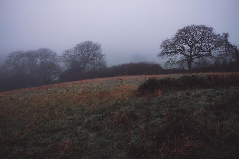 Christmas in Wales - Ben Holbrook DriftwoodJournals.com-8060