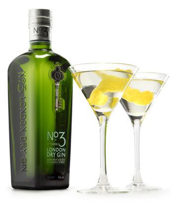 no3 gin Martini w_bottle LR