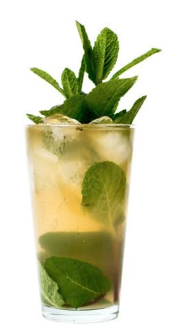 Dry Sparkling Water Mojito
