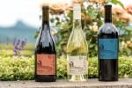 2016 Next Pinot Gris Willamette Valley