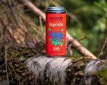 Lawson's Finest Liquids Hopcelot IPA