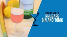 Rhubarb Gin and Tonic