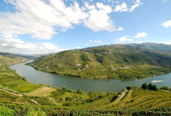Douro - Drink Portuguese Wine