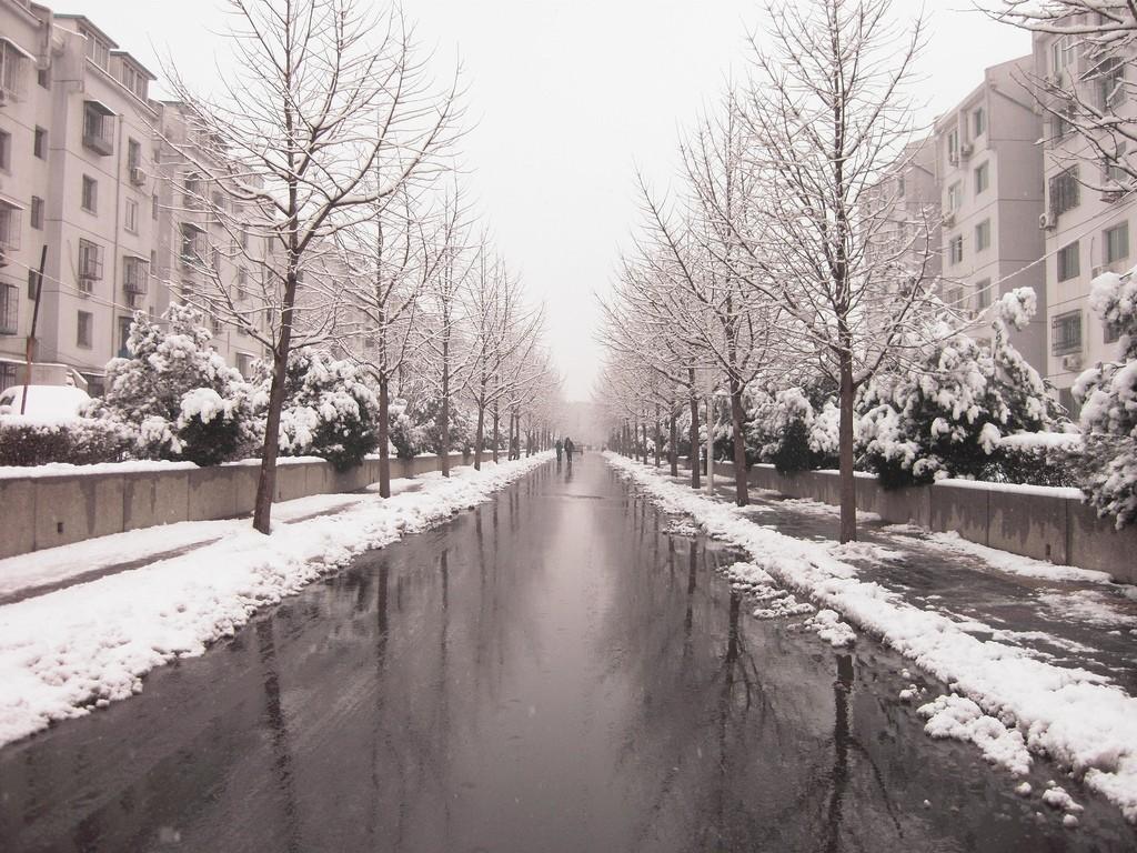 Winter in Beijing. Photo by Cory M. Grenier via Flickr CC