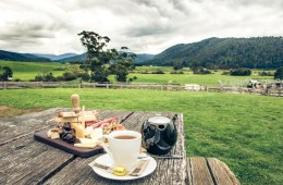 7 Foods You Should Try in Australia