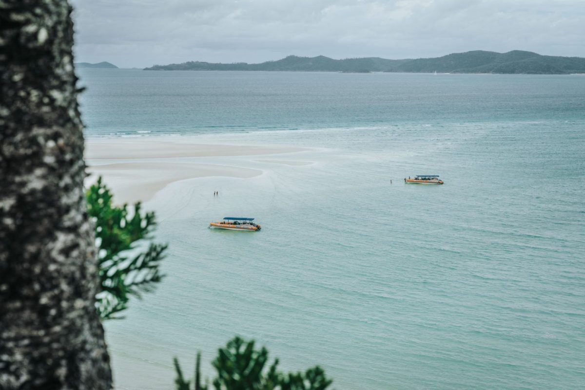 Exploring Whitehaven Beach on a Cruise Whitsundays Tour from