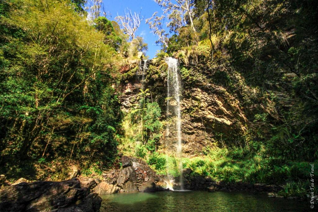 The beautiful Twin Falls, Springbrook National Park