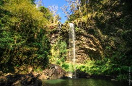 The beautiful Twin Falls, Springbrook National Park
