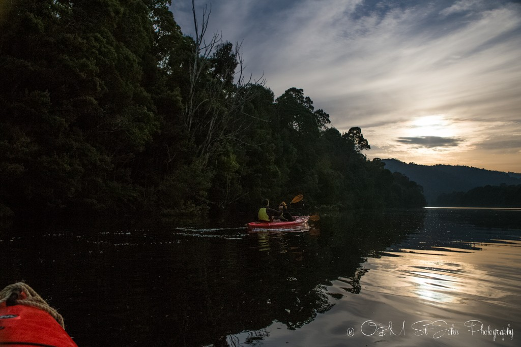 Morning kayak on PIermann River in Corinna