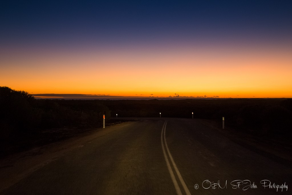 On the road at night, Western Australia