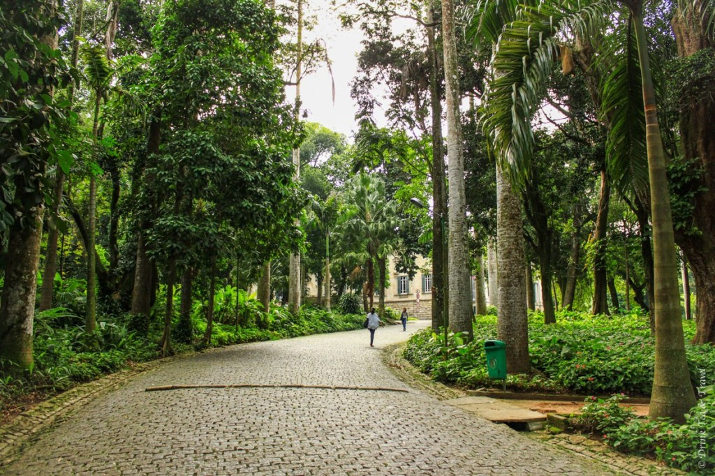 Parque Lage, Rio de Janeiro. The start of our hike to Christ the Redeemer
