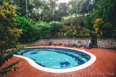 Costa Rica Costa Verde-9027