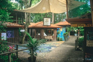 Costa Rica Dominical-8792