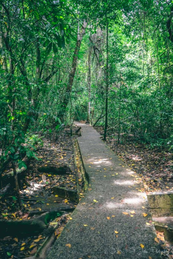Entrance to the Manuel Antonio National Park. Puntarenas. Costa Rica