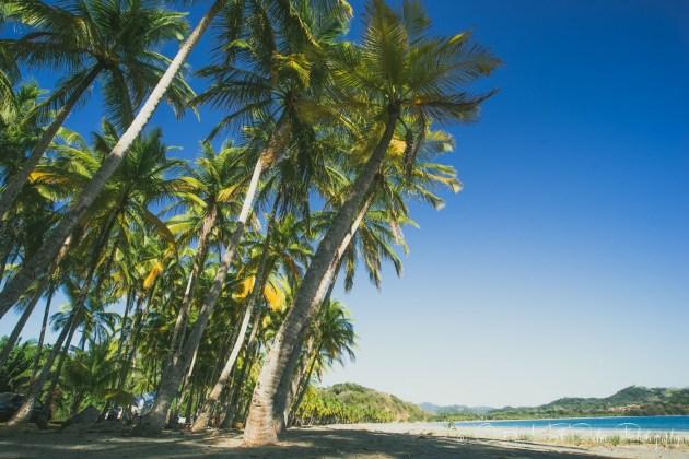 Costa Rica Samara-4799