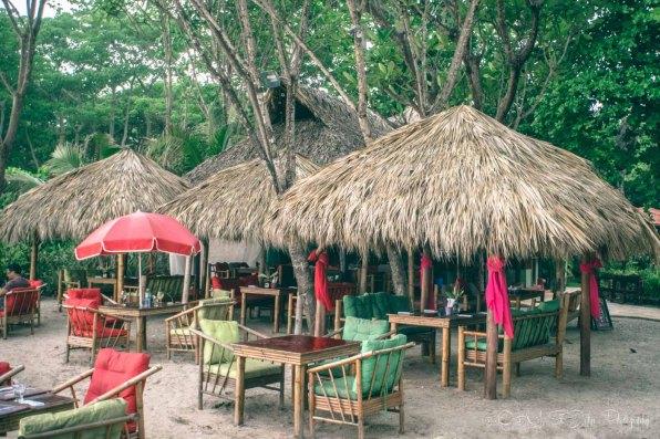 Costa Rica Santa Teresa-7806