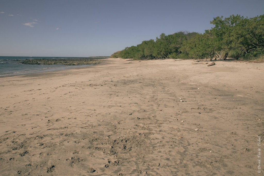 We'll be getting married on this exact beach. Costa Rica.