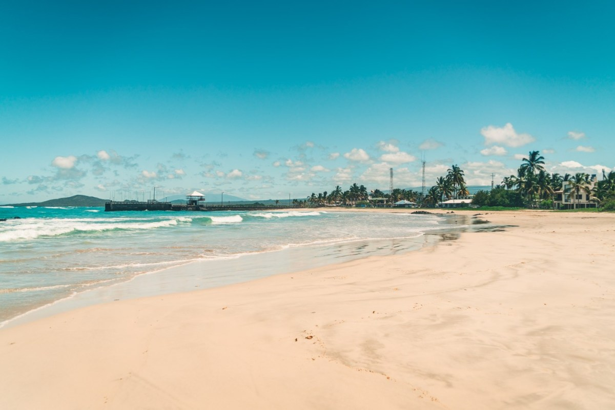 Long stretch of beach on Isabela Island