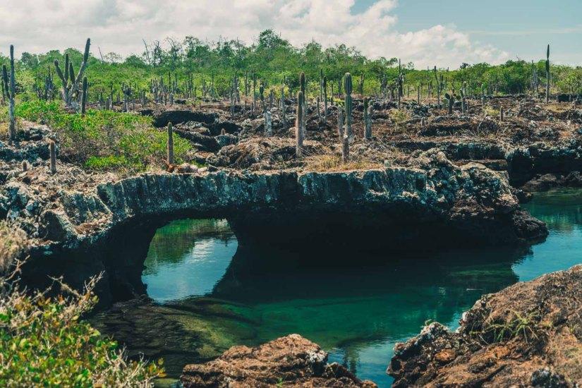 Ecuador Galapagos Isabela tuneles-3632