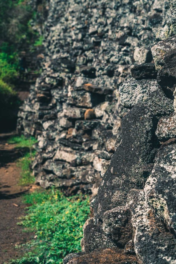 Ecuador Galapagos Isabela wall of tears-3457