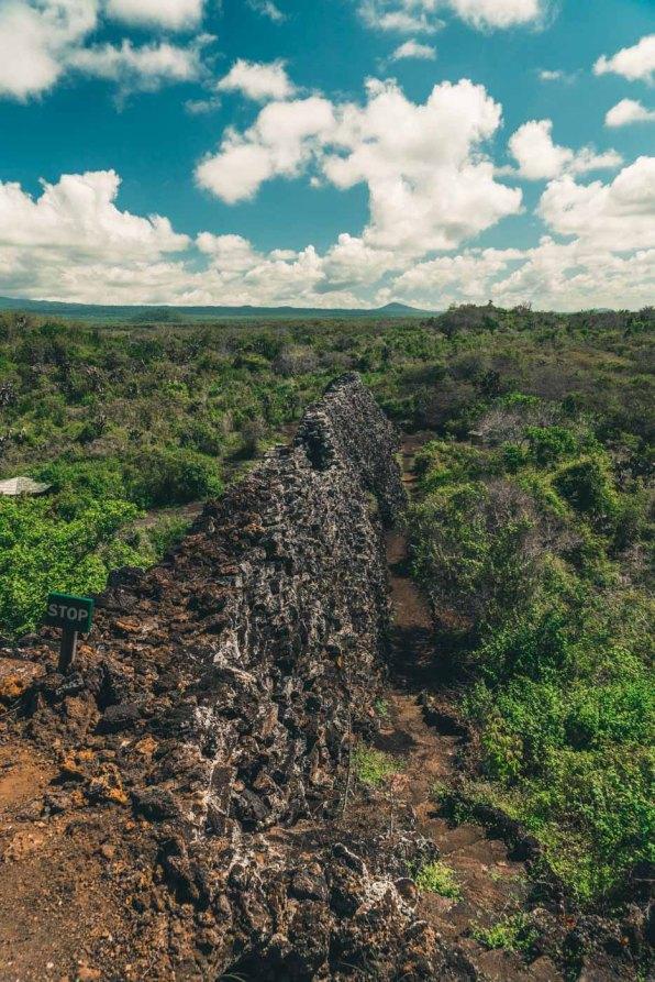 Ecuador Galapagos Isabela wall of tears-3467