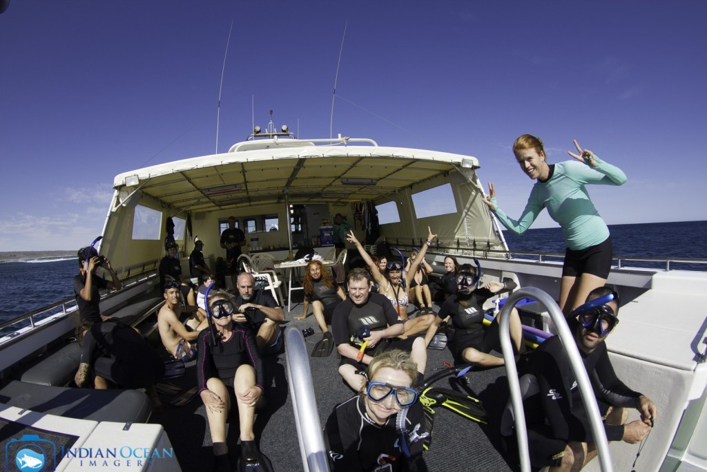 Ready to jump in! Photo by Indian Ocean Imagery courtesy of Kings Ningaloo Reef Tour