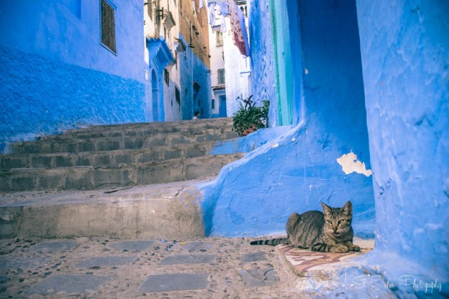 Morocco Chefchaouen-0562