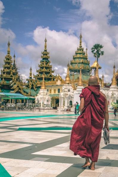 Myanmar Burmese Monk-9382