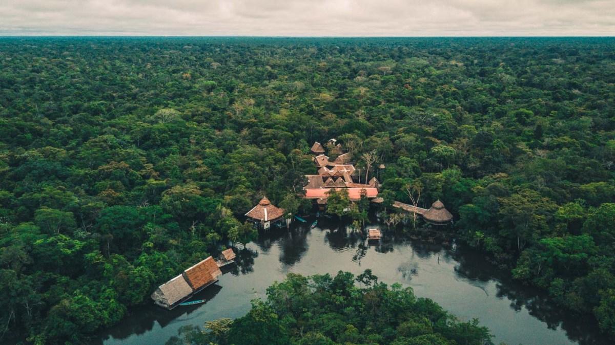Tahuayo Lodge, Amazon, Peru