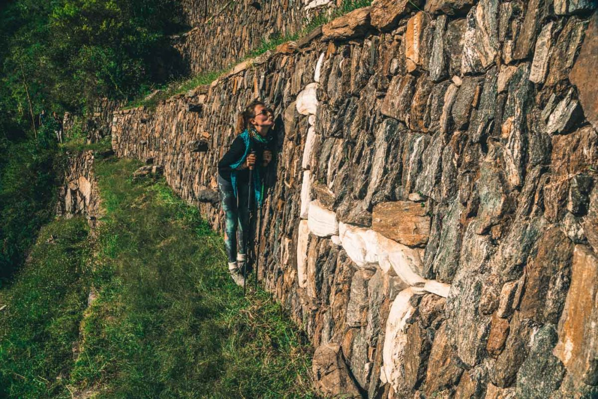 Hanging with Llamas at the Llama agricultural terraces