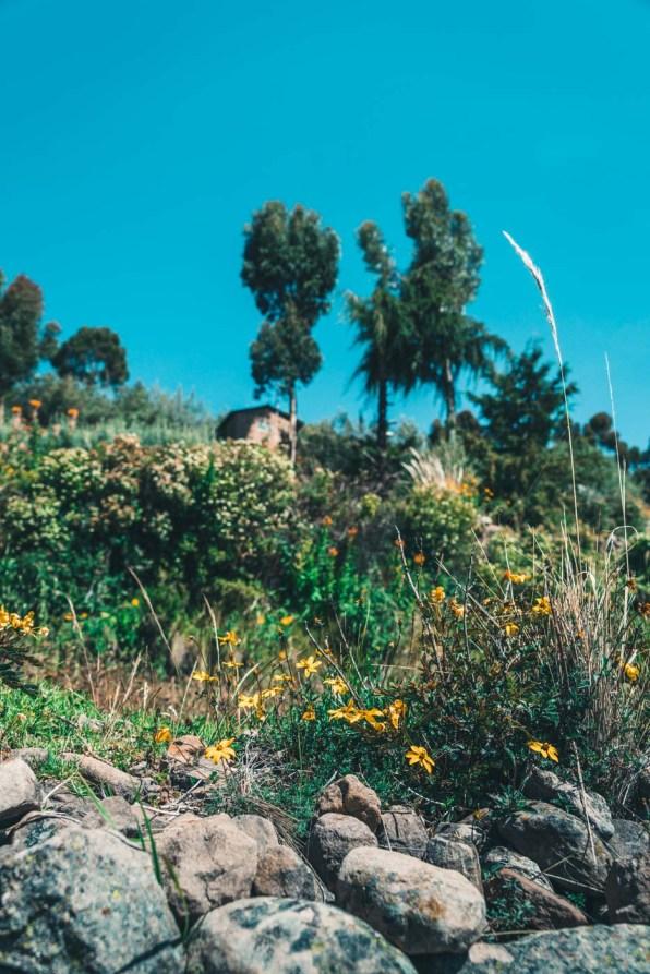 Peru Lake Titicaca Taquile-5288