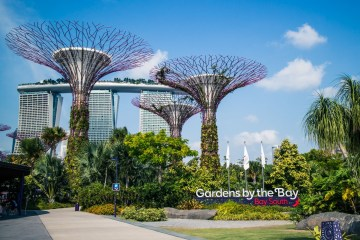 Singapore City Guide. Cover Photo