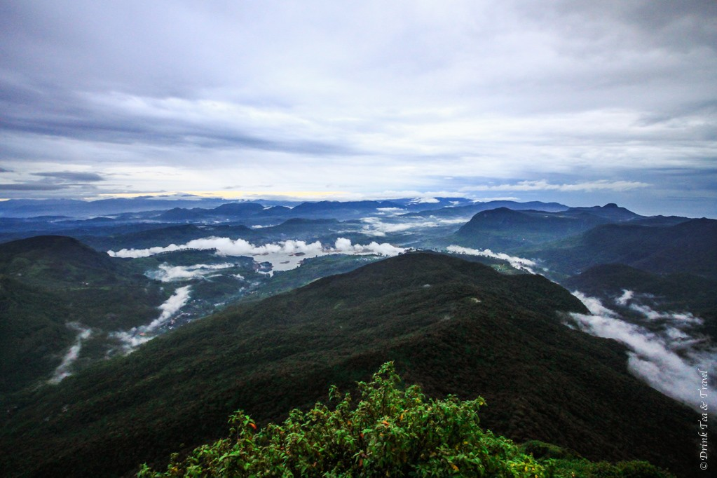 View from the top of Adam's Peak